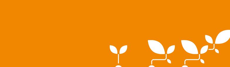 Blumen_orange_784x229